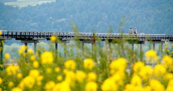 The World's Longest Wooden Bridge
