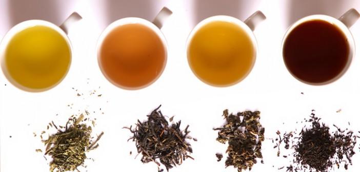 Many colors of tea
