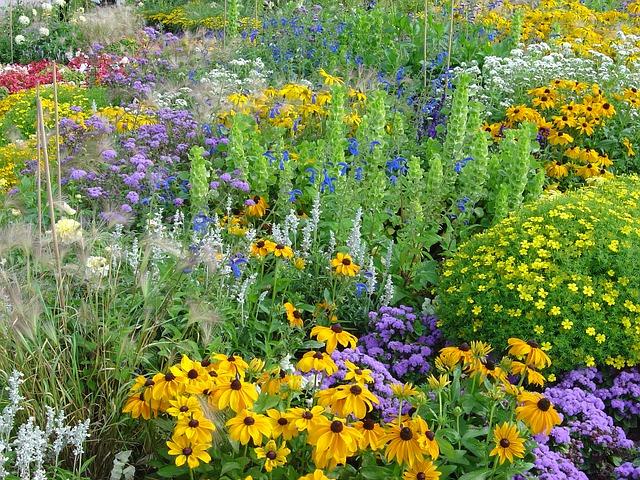 Grown in the usa for Bodas en el jardin botanico medellin