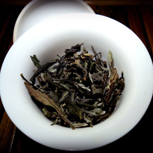 Guide_to_White_tea_Eastern