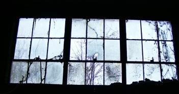 Creeeeeepy Window!