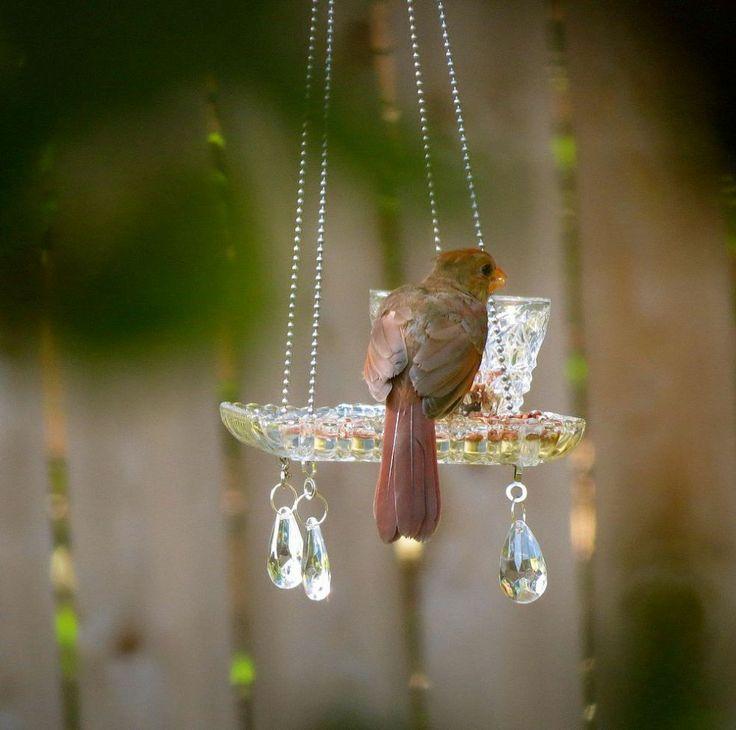 Crystal Teacup Bird Feeder