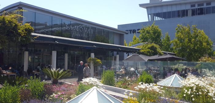 San Francisco Pilgrimage: Samovar Tea Lounge
